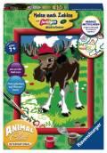 Ravensburger Malen nach Zahlen Classic Sonderserie E Animal Club International Elch 28068