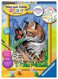 Ravensburger Malen nach Zahlen Classic Serie D Katze mit Schmetterling 28651
