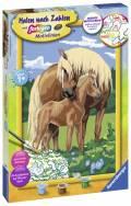 Ravensburger Malen nach Zahlen Classic Serie C Liebevolle Pferde 28911