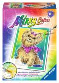 Ravensburger Mixxy Colors Wasserfarben Mini Yorkshire Terrier 29112